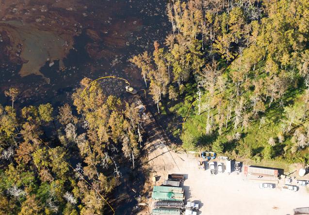 Image by Jeffrey Dubinsky / Louisiana Environmental Action Network