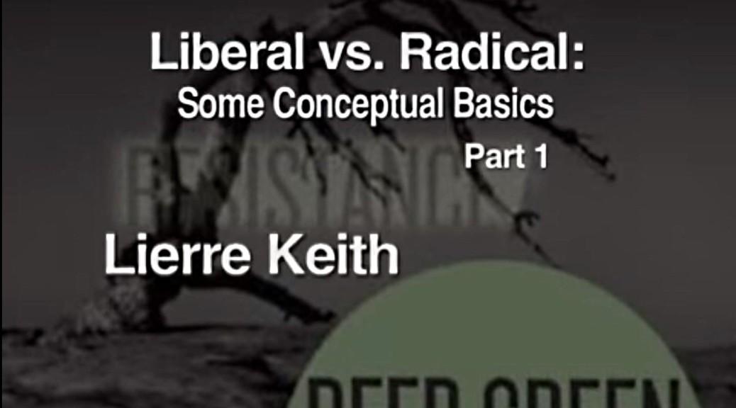 Liberal vs Radical